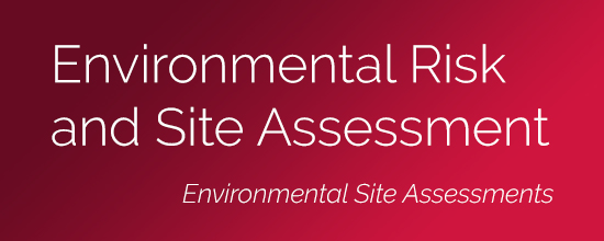 Environmental Risk and Site Assessment