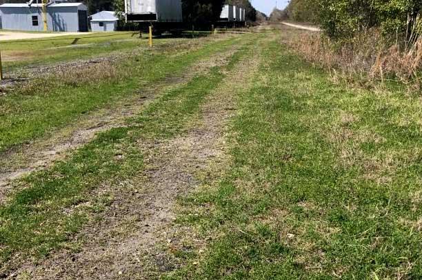 Cleared Field